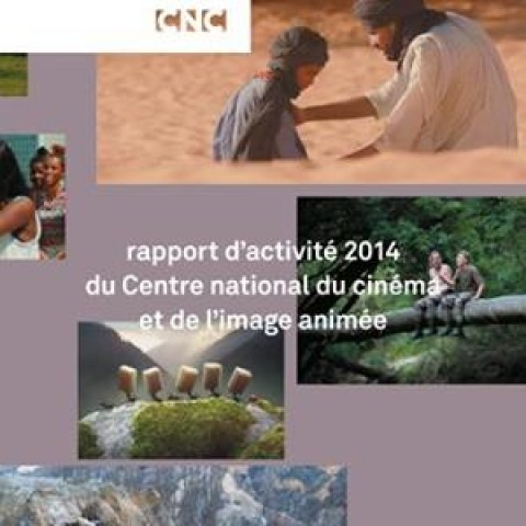 Le court métrage en 2014 production et diffusion (CNC)