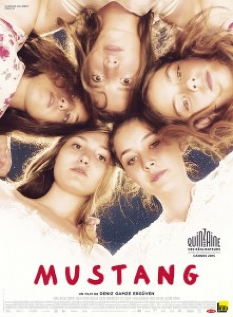 "EVENEMENT SATIS ALUMNI – PROJECTION DU FILM ""MUSTANG"" ET RENCONTRE-DÉBAT"